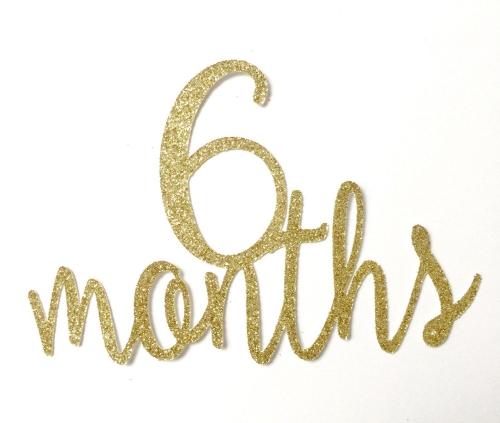 Celebrating 6-Month Anniversary